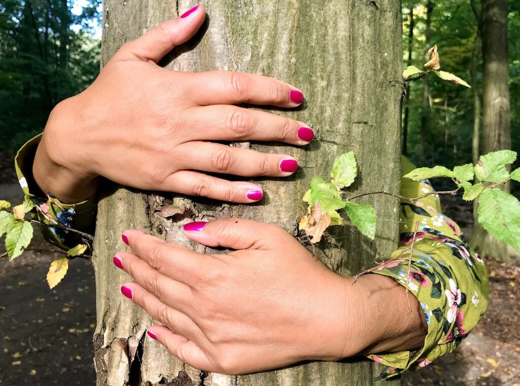 The plant is rooted, therefore Earthed and by placing your bare skin against that plant, you receive the vibrational charge. Tree huggers understand this.